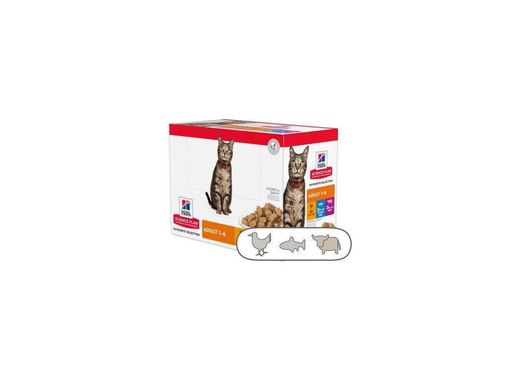 Hill's Fel. kapsa Adult Chicken & Beef & Ocean fish 12 x 85 g