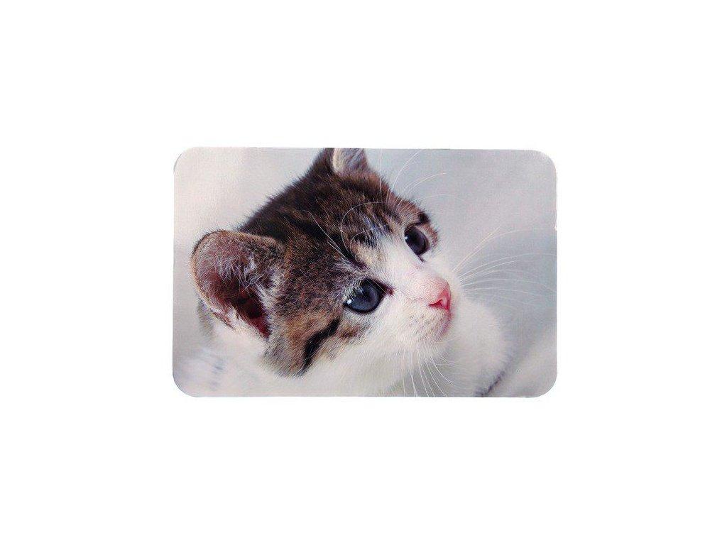 Prostírání pro kočku pod misky fotka kočky 43x28cm