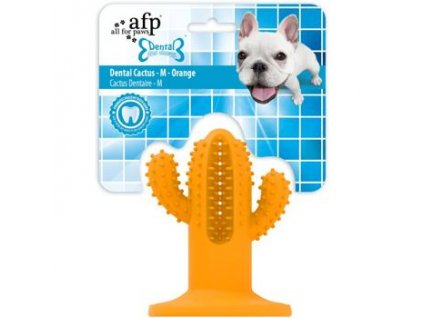 Žvýkací kaktus AFP Dental — Medium