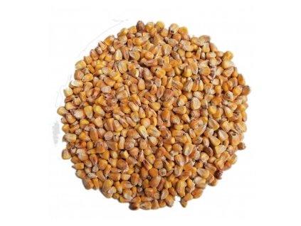 Krmná kukuřice pro zvířata 1 kg | Krmiva u Toma