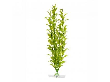 Akvarijní plastová rostlinka – Hygrophila střední   Umělá vodní rostlina   Krmiva u Toma