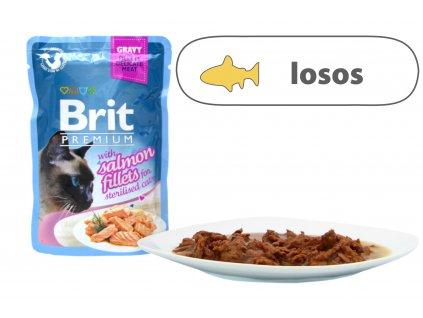 Brit Premium Cat Delicate Fillets in Gravy Salmon Sterillised 85 g