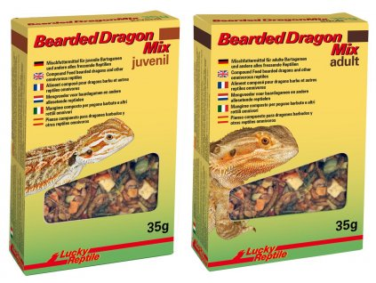 Lucky Reptile Bearded Dragon Mix Zkušební balení Juvenile