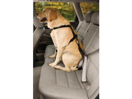Kurgo Bezpečnostní autopás pro psa s ouškem Seatbelt Tether