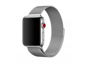 clearo milansky tah silver apple watch