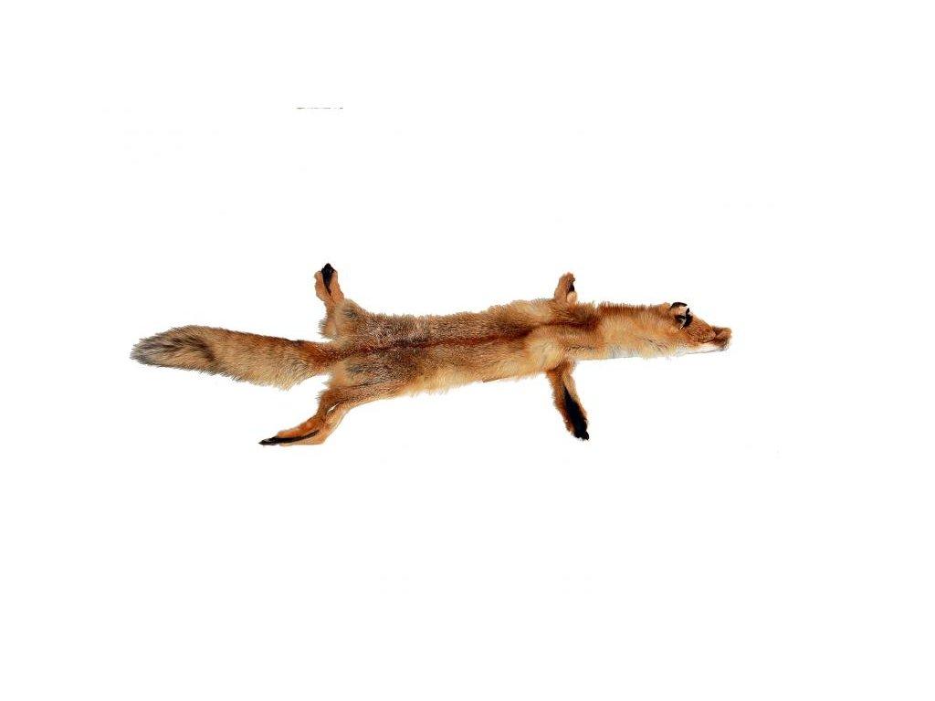 přírodní kožešina liška divoká česká výroba kůže Kubát 00002