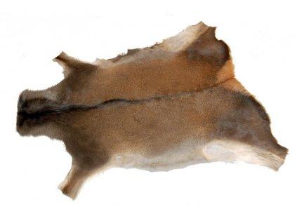 přírodní kožešina jelen evropský česká výroba kůže Kubát 00004
