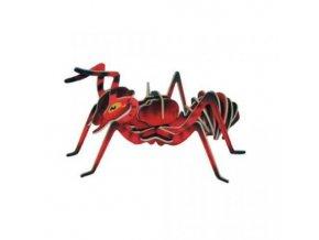 Woodcraft Dřevěné 3D puzzle mravenec