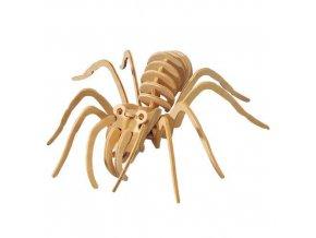Woodcraft Dřevěné 3D puzzle tarantule