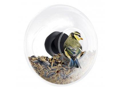 Krmítko pro ptáčky na okno