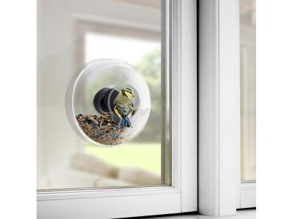 Ablakba helyezhető madáretető