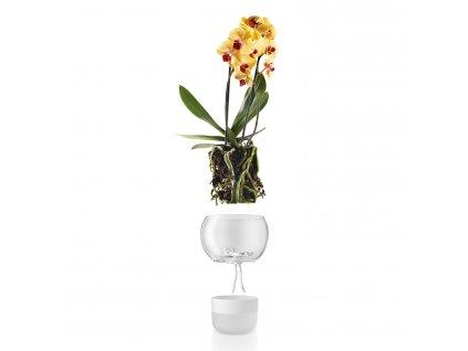 Sklenený samozavlažovací kvetináč na orchidey O 15 cm Eva Solo