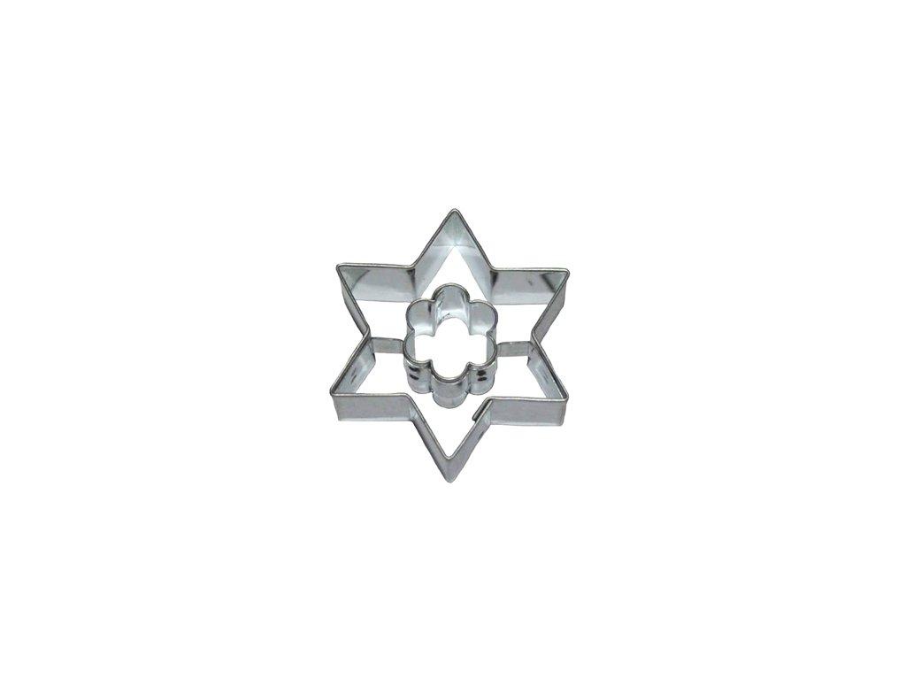 Hvězda / květ