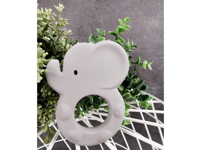 Kousátko slon