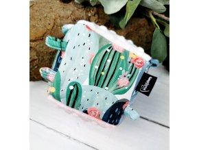 Muchlací kostka ,,Cactus,,