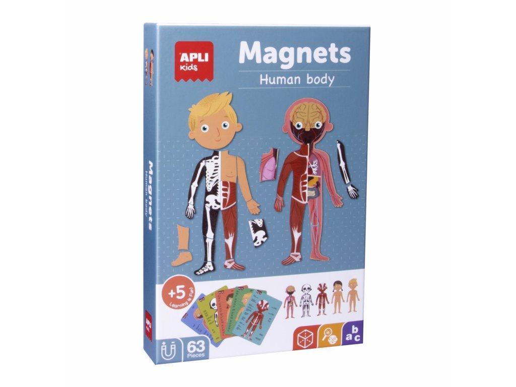 magnetyczna ukladanka apli kids cialo czlowieka