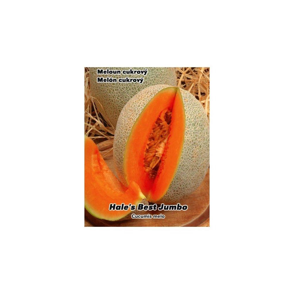 Meloun cukrový Hale's Best Jumbo - semena cukrového melounu 0,5 g, 15 ks