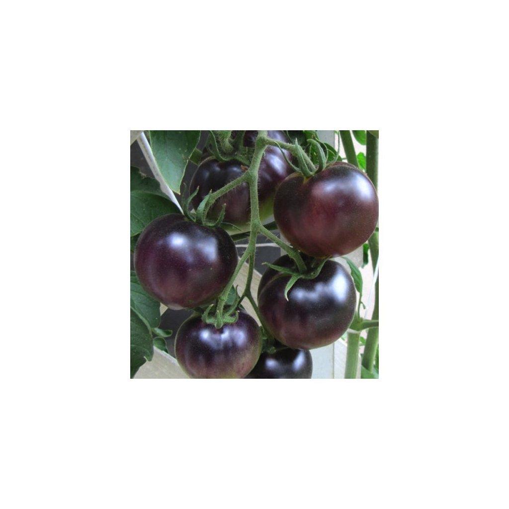 Rajče tyčkové černé Black Cherry - semena rajčat 10 ks