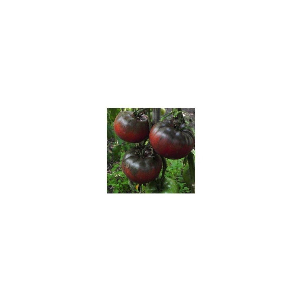 Rajče tyčkové černé Black from Tula - semena rajčat 10 ks