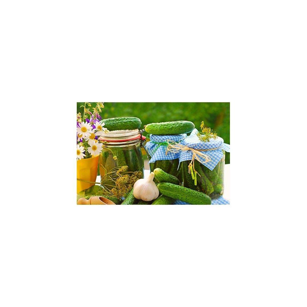 Okurka nakládačka F1 Twigy - semena okurky 1 g, 30 ks