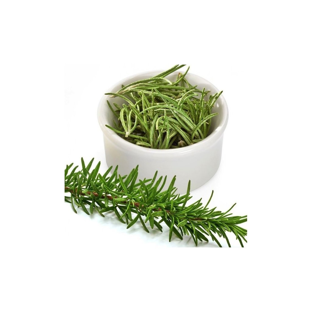 Rozmarýn lékařský (Rosmarinus officinalis) semena rozmarýnu 50 ks