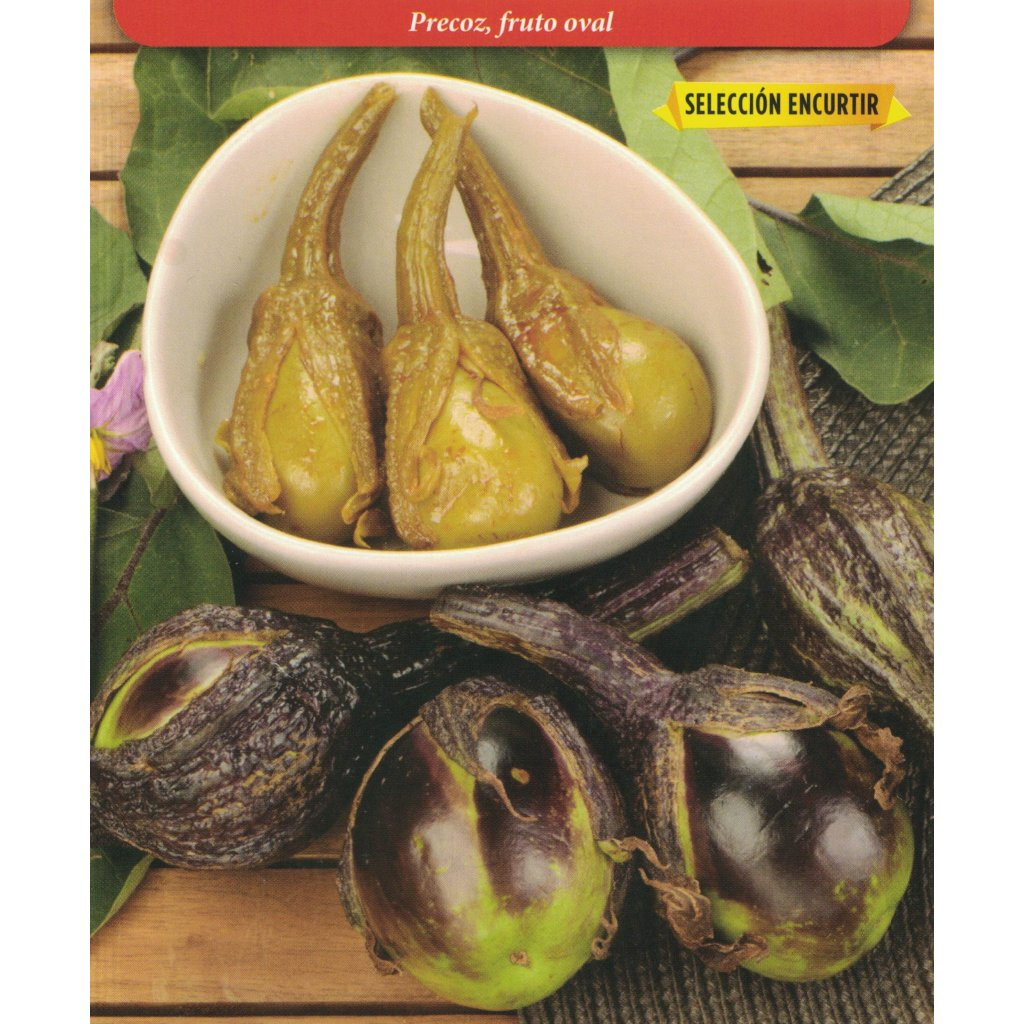 Lilek vejcoplodý (Solanum melongena) odrůda Redonda Rosa - 0,7 g (cca 120 semen)