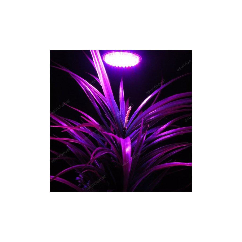LED žárovka fialovo-červená, 7W E27 pro rostliny - květ