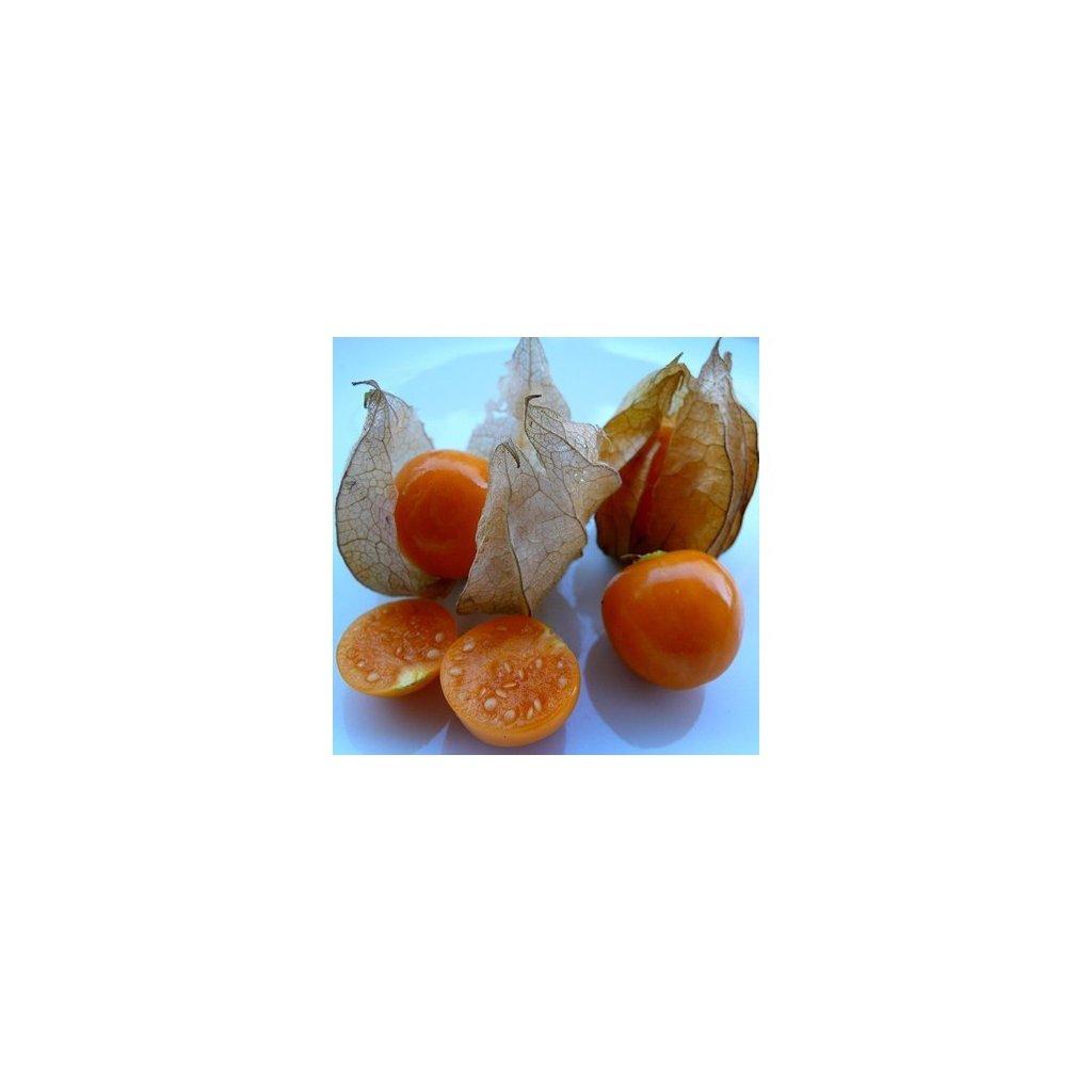 Mochyně peruánská (Physalis peruviana) semena mochyně - 20 ks