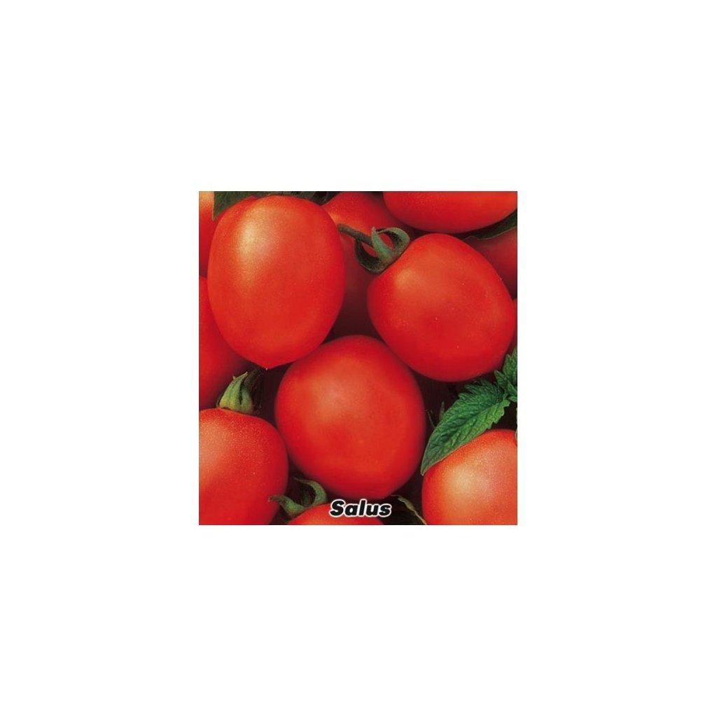 Rajče keříčkové červené oválné Salus - semena rajčat 0,3 g, 100 ks