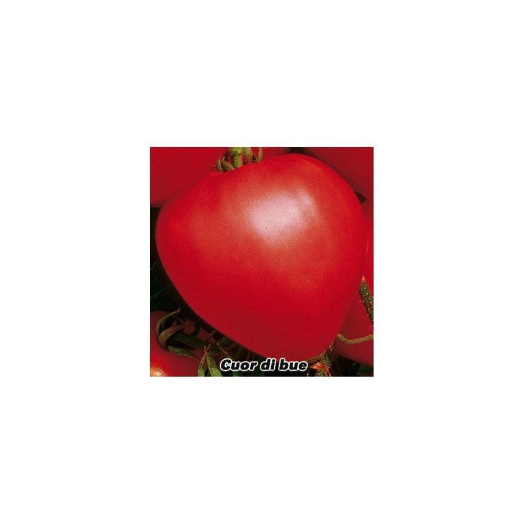 Rajče tyčkové červené Cuor di Bue - Býčí srdce - semena rajčat 0,2 g, 50 ks