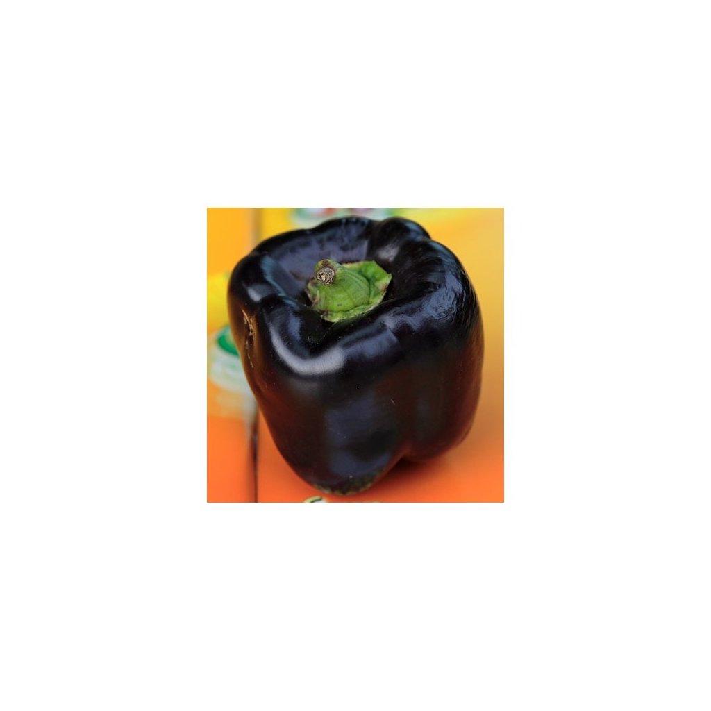 Paprika zeleninová černá - Nigra - semena papriky - 0,4 g, 50 ks