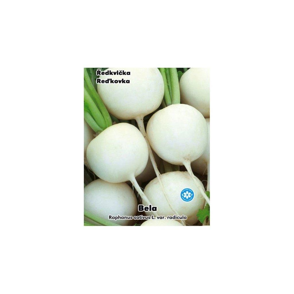 Ředkvička bílá - Bela - semena ředkvičky 4 g, 400 ks