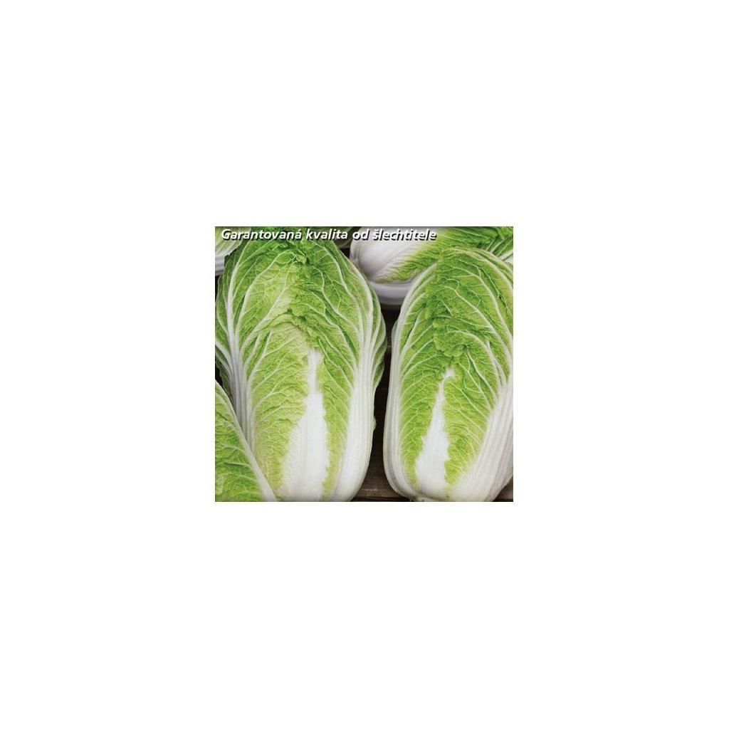 Pekingské zelí Hilton - semena zelí 0,4 g, 100 ks