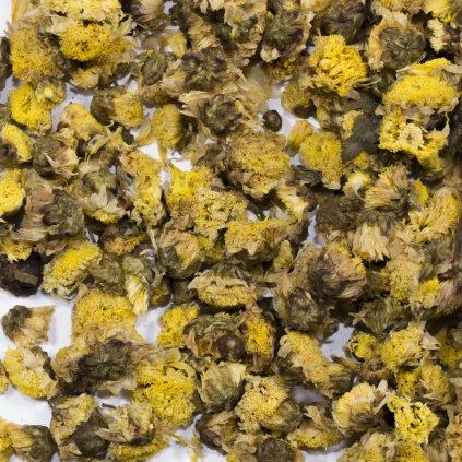 Chryzantéma květ - Thajsko 100g