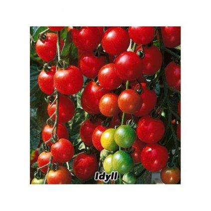 Rajče tyčkové rybízové červené Idyll - semena rajčat 0,2 g, 50 ks