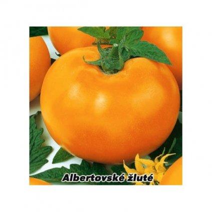 Rajče tyčkové žluté Albertovské - semena rajčat 0,2 g, 50 ks