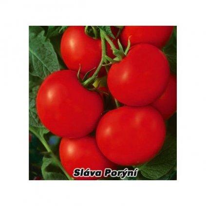 Rajče tyčkové červené Sláva Porýní - semena rajčat 0,2 g, 50 ks