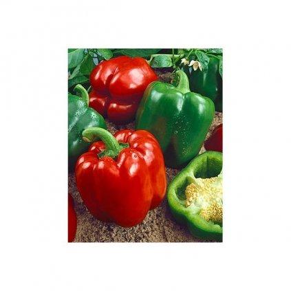 Paprika zeleninová - California Wonder - semena papriky - 0,4 g, 50 ks