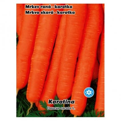 Mrkev raná karotka Karotina - semena karotky 2 g, 1500 ks