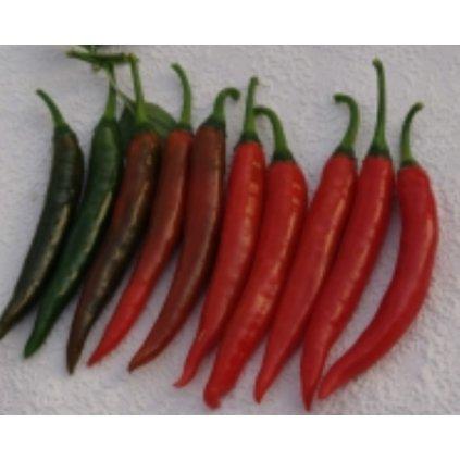 Gutera - okrasné chilli papričky kozí rohy - semena - 0,3 g, 45 ks