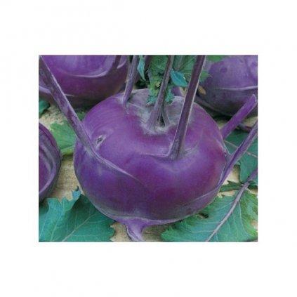 Kedluben raný modrý - Blankyt - semena kedlubny 0,8 g, 220 ks