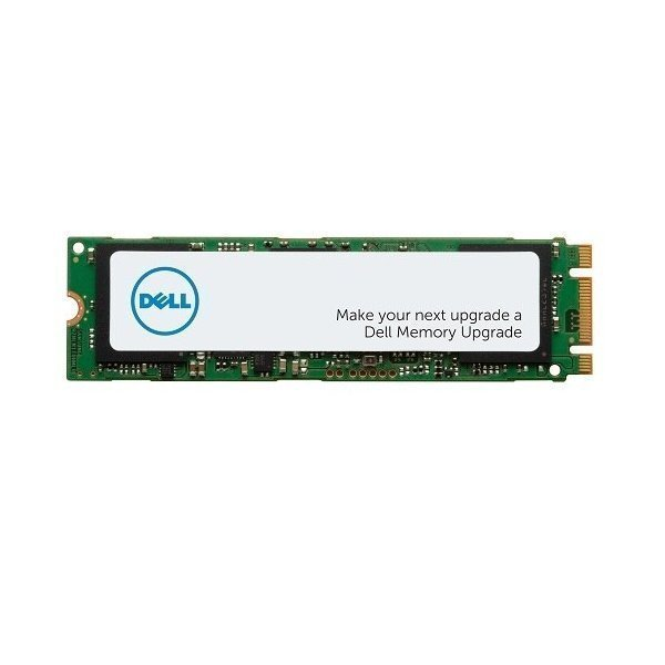 DELL disk 1TB SSD/ M.2 PCIe NVMe/ Class 40/ 2280, AA615520