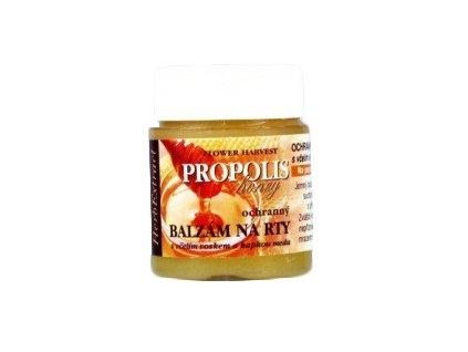 Propolis - balzám na rty 25ml