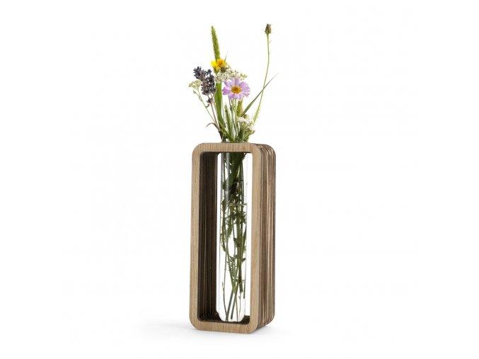 Kartoons Cardboard vase In Vitro 01 1500 x 1500 px