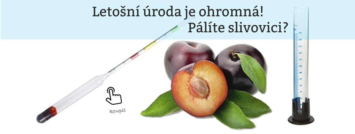 Pálení ovoce