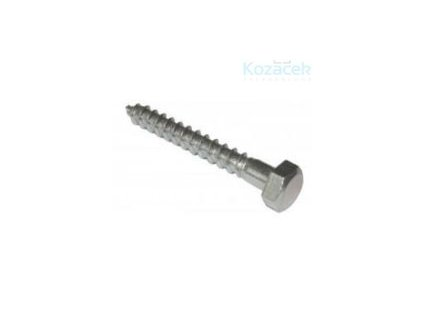 Vrut 5x 60mm Zn 6hran  100ks (bal.200ks)