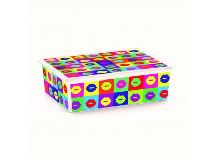 Box úložný C BOX ARTISTS 55x38,5x16,5cm 27L, kolečka