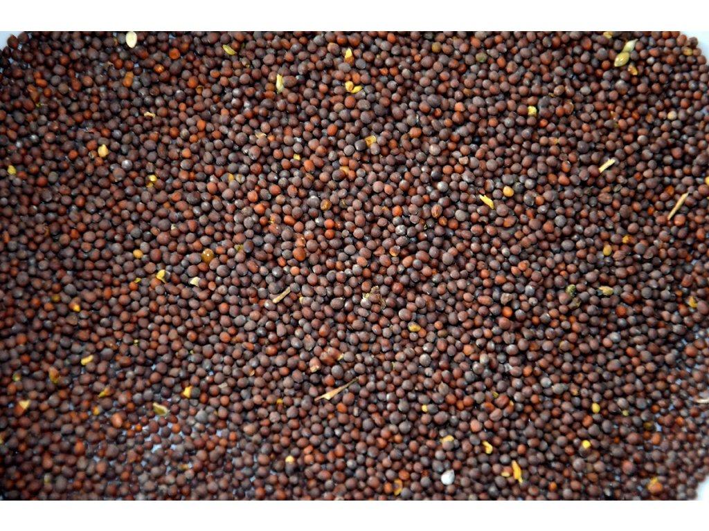 Hořčičné semínko hnědé - sareptská hořčice