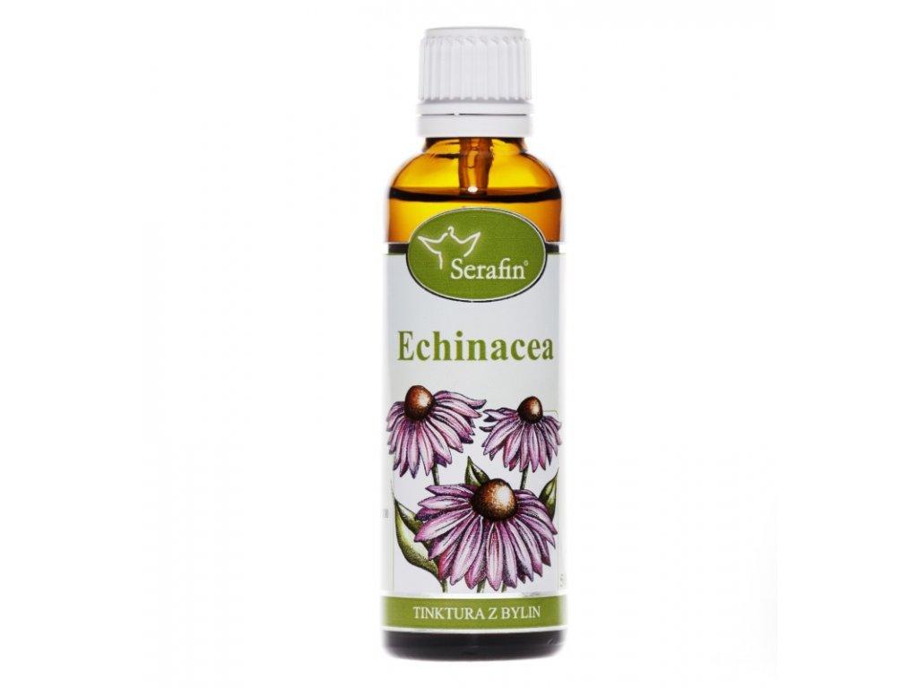 echinacea TB