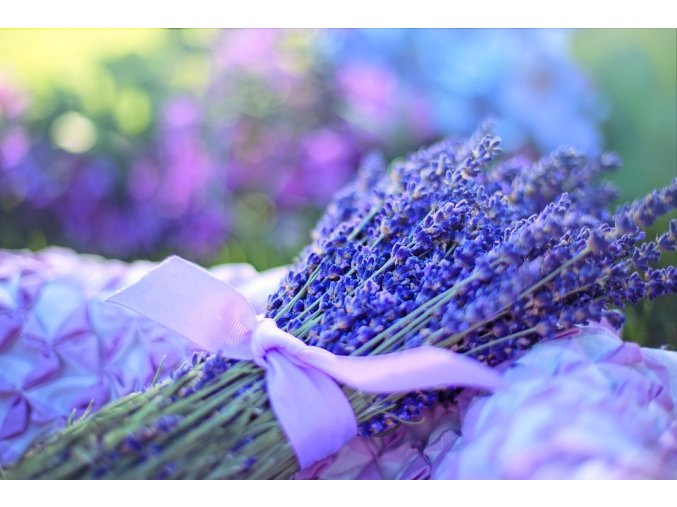 lavender 2482374 960 720